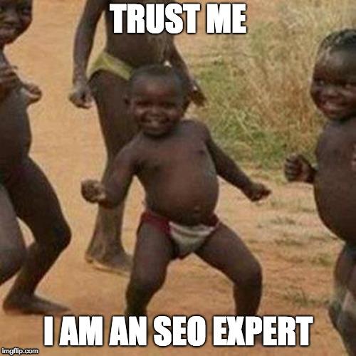 trust me I am an seo expert
